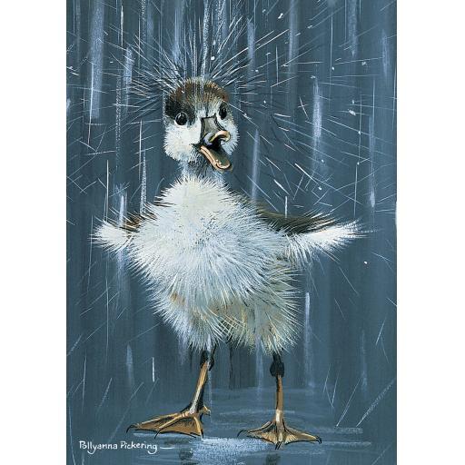 Notecard Pack - Duckling 'Splash'