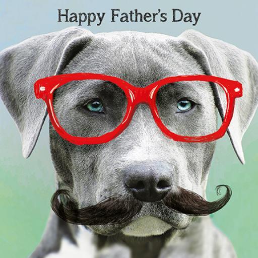 Fathers Day Card - Grey Dog