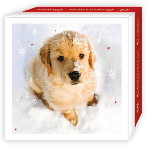 Assorted Christmas Cards - Christmas Pups