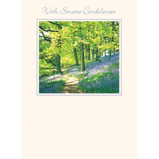 Sympathy Card - Bluebell Wood