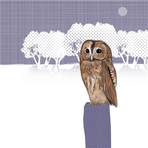 RSPB Nature Trail Card - Tawny Owl