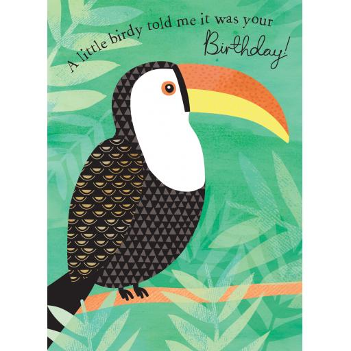 Pom Poms Card Collection - Toucan