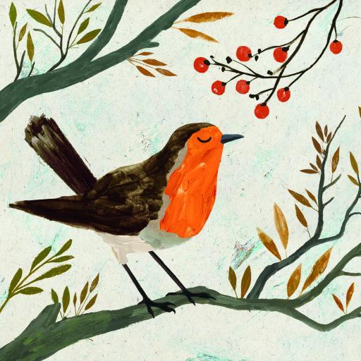 RSPB Small Square Christmas Card Pack - Christmas Robin