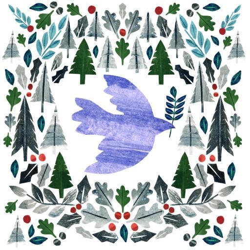 RSPB Small Square Christmas Card Pack - Dove Flight