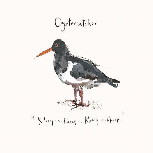Madeleine Floyd - The Dawn Chorus - Oystercatcher