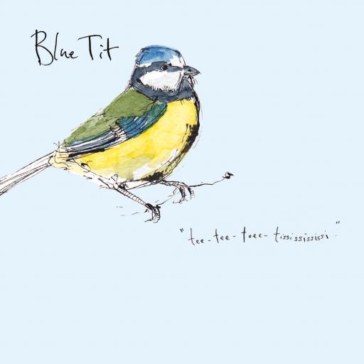Madeleine Floyd - The Dawn Chorus - Blue Tit