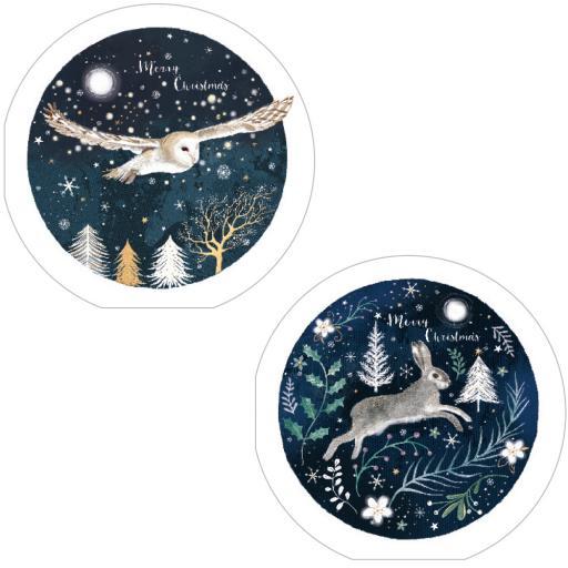 RSPB Luxury Christmas Card Pack - Moonlit Christmas