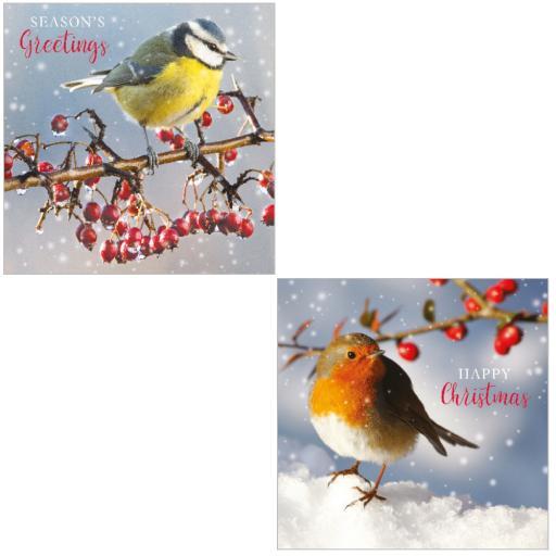RSPB Luxury Christmas Card Pack - Winter Birds