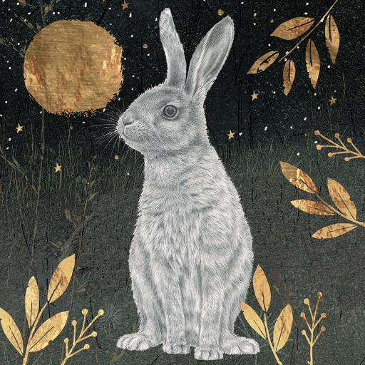RSPB Small Square Christmas Card Pack - Hare & Moon