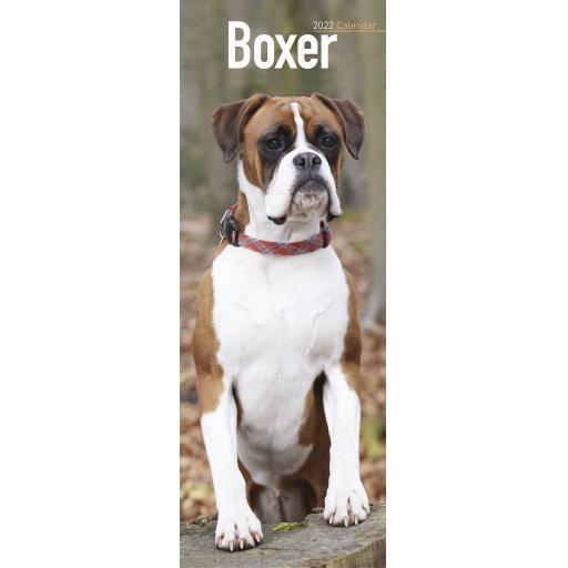 Boxer Slim Calendar 2022