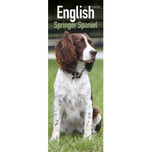 English Springer Spaniel Slim Calendar 2022