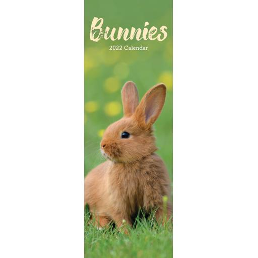 Bunnies Slim Calendar 2022