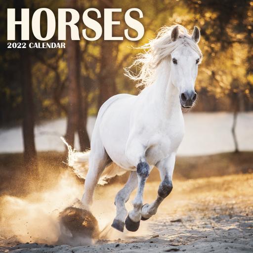 Horses Mini Wall Calendar 2022