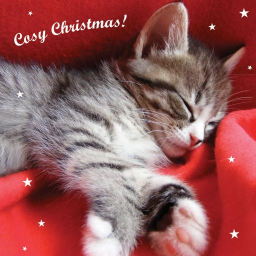 Charity Christmas Card Pack - Very Cosy Christmas