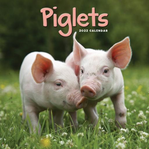 Piglets Mini Wall Calendar 2022