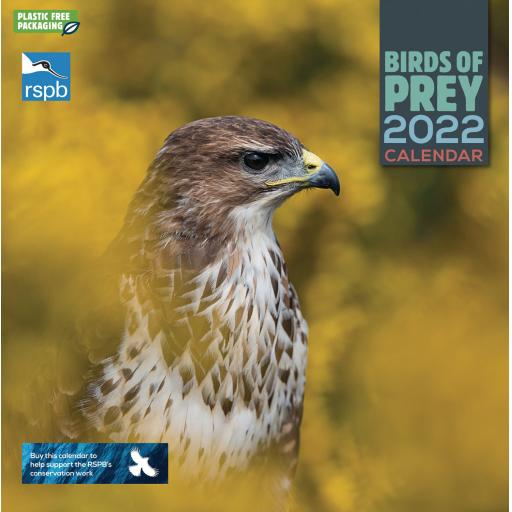 RSPB Birds of Prey Wall Calendar 2022 (PFP)