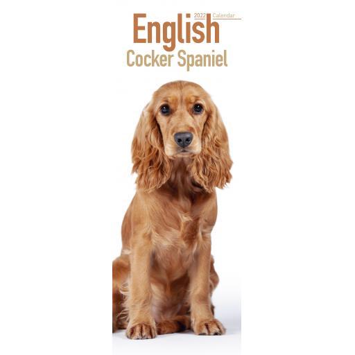 English Cocker Spaniel Slim Calendar 2022