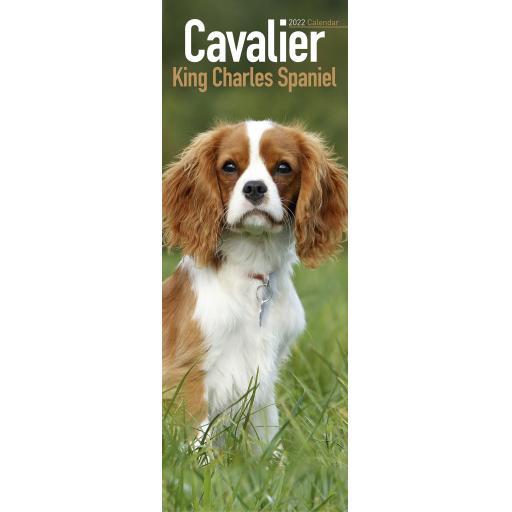 Cavalier King Charles Spaniel Slim Calendar 2022