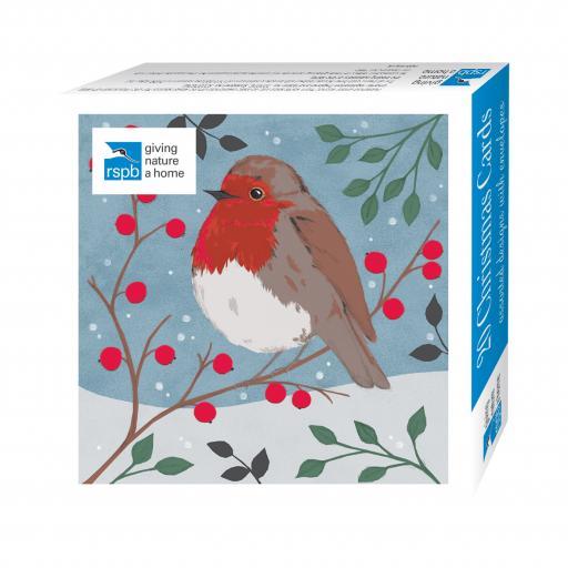 Assorted Christmas Cards - RSPB