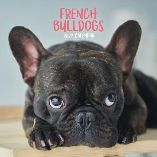 French Bulldogs Mini Wall Calendar 2022