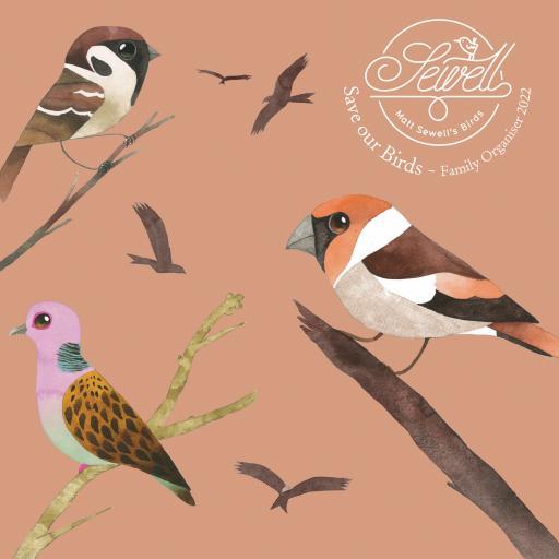 Matt Sewells Save Our Birds Wall Planner 2022