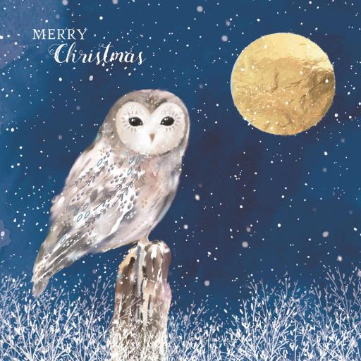 Charity Christmas Card Pack - Moonlight Owl