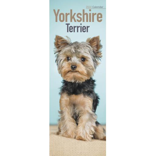 Yorkshire Terrier Slim Calendar 2022