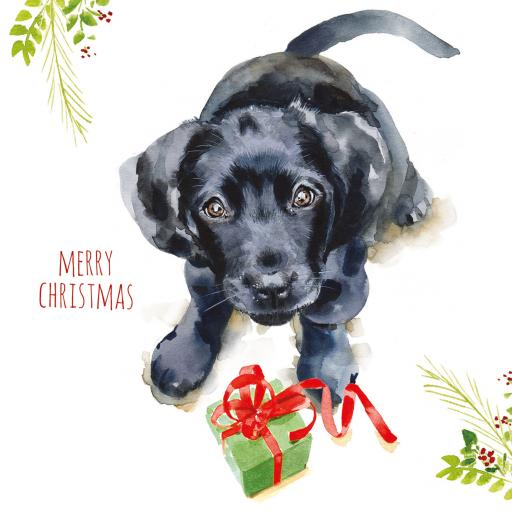 Charity Christmas Card Pack - Puppy Dog Wishes