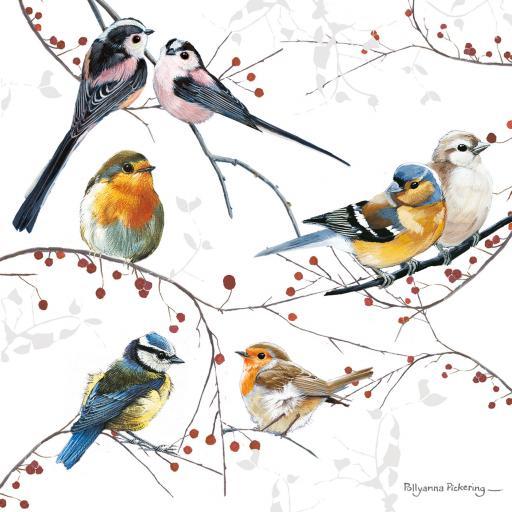 Charity Christmas Card Pack - Bird's & Berries