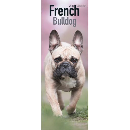 French Bulldog Slim Calendar 2022