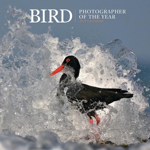 Bird Photographer Of The Year Wall Calendar 2022