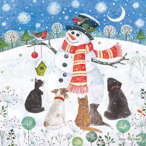 Charity Christmas Card Pack - Snowman's Friend's