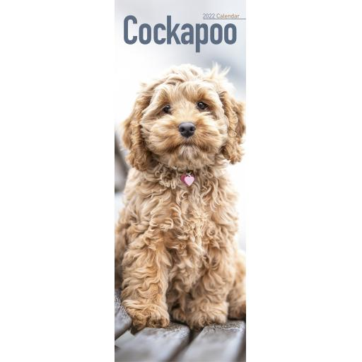 Cockapoo Slim Calendar 2022