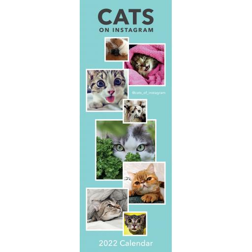 Cats on Instagram Slim Calendar 2022