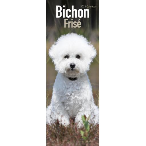 Bichon Frise Slim Calendar 2022