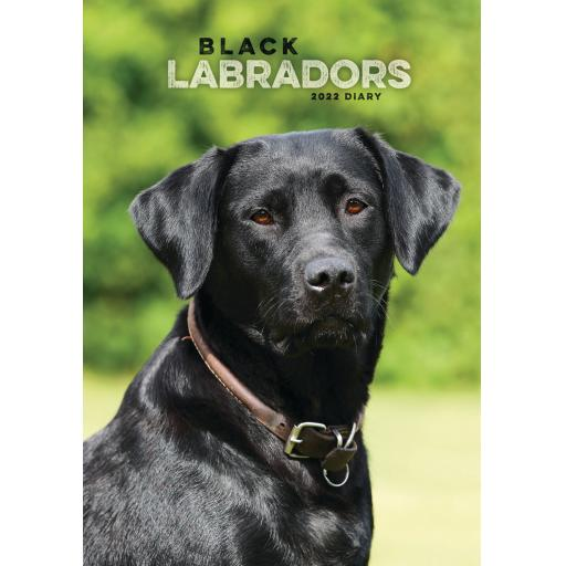 Labrador Retriever Black A5 Diary 2022