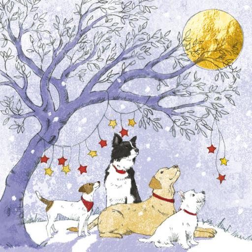 Charity Christmas Card Pack - Friends Star Gazing