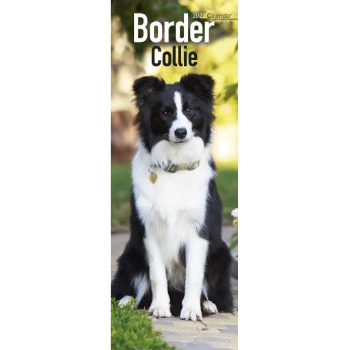 Border Collie Slim Calendar 2022