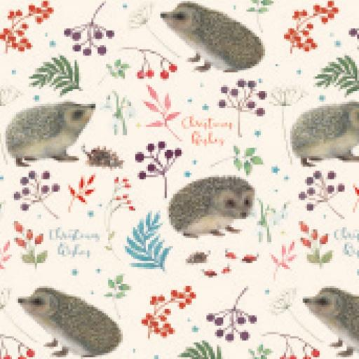 Christmas Wrap & Tags - Winter Hedgehogs