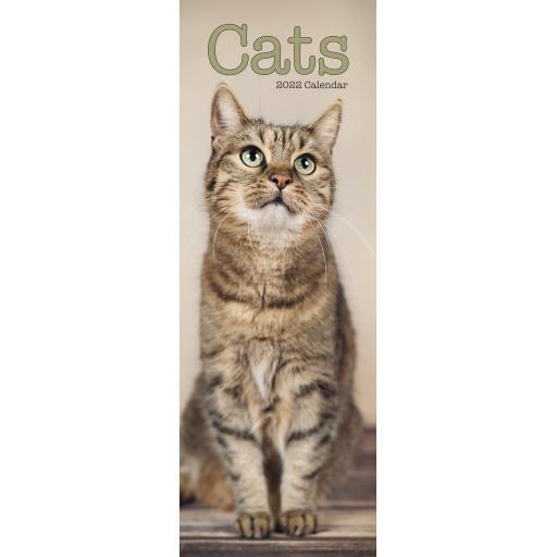 Cats Slim Calendar 2022